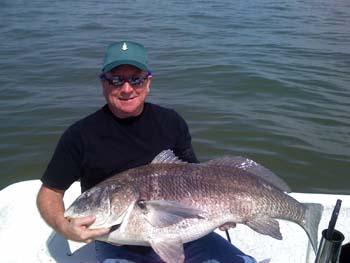 drum-kingfish-trout