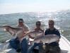 3-nice-redfish