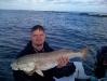 galveston-guide-kingfish