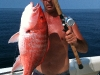 guided-texas-snapper-trip