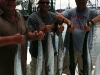 texas-kingfish-charter