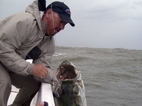 texas-tarpon-guide